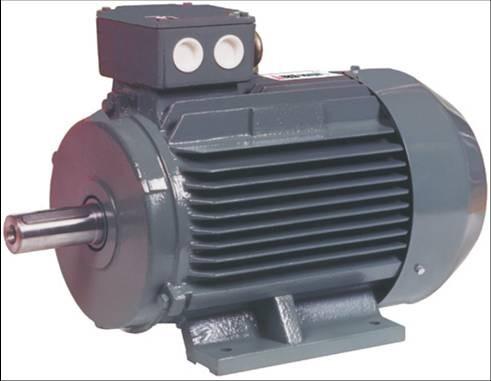 Inverter motor nedir